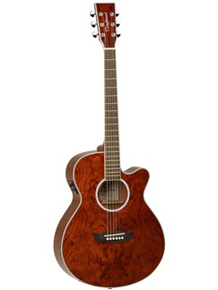 Tanglewood: TSF CE XB Evolution Exotic Electro-Acoustic Guitar Instruments | Electro-Acoustic Guitar