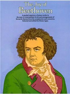 The Joy Of Beethoven Livre | Piano