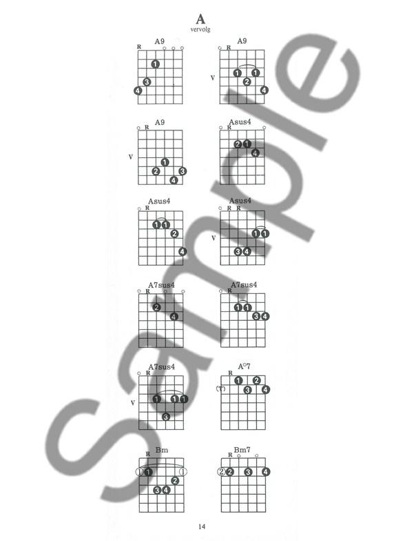 Guitar Case Chord Book Dutch Edition Guitar Books Tuition