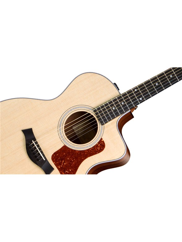 taylor 214ce electro acoustic guitar taylor electro acoustic guitar instruments. Black Bedroom Furniture Sets. Home Design Ideas