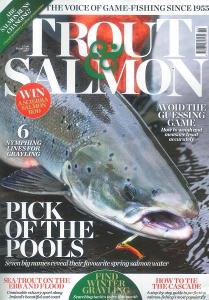 how to cook salmon trout