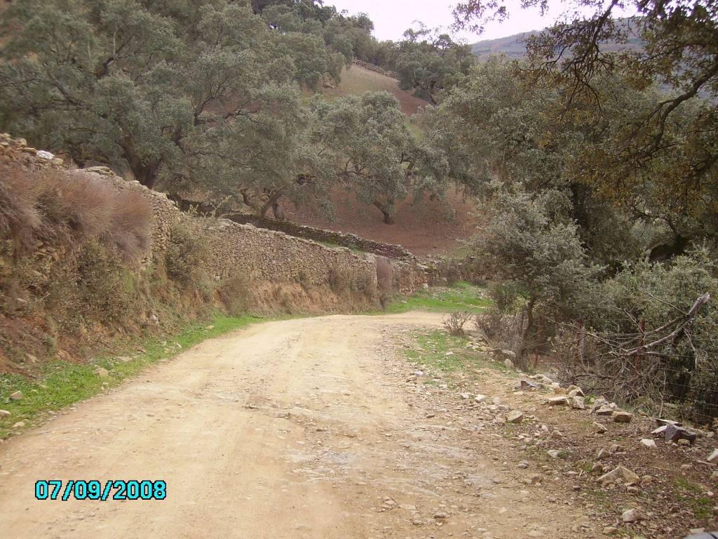 En la Sierra de Aracena. Camino al Cerromolinos (1)