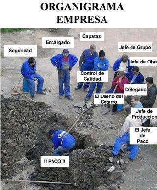 organigrama-de-empresa
