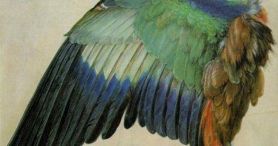 La pintura de los días por Demetrio Reigada: Hoy Alberto Durero, el pintor de las páginas más brillantes de la historia del arte occidental