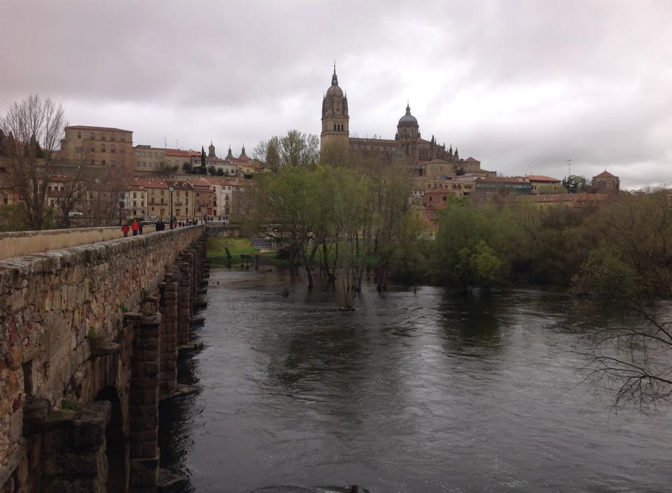 Vista de Salamanca desde el puente romano