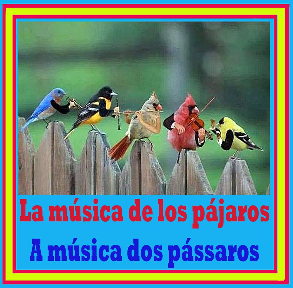 La música de los pájaros