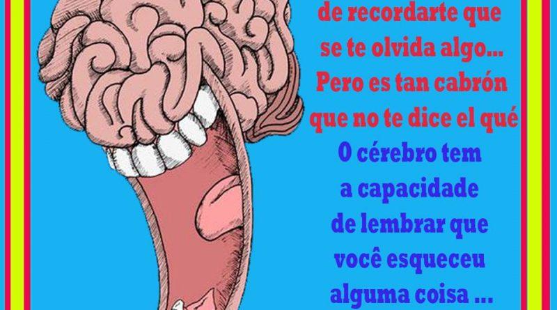 el-cerebro-y-la-capacidad-de-recordar