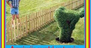 comunicacion-no-verbal-con-tu-vecino