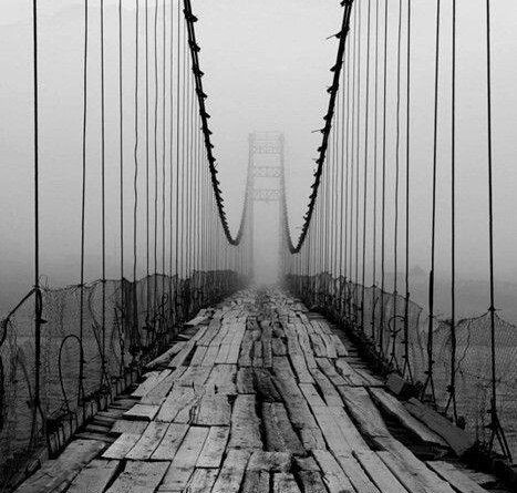 El camino en la niebla