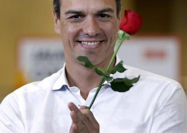 Sánchez con rosa
