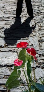 la-sombra-foto-de-rodolfo-arevalo