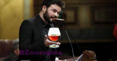 Rufián en el Parlamento. Ilustración de Zooropina