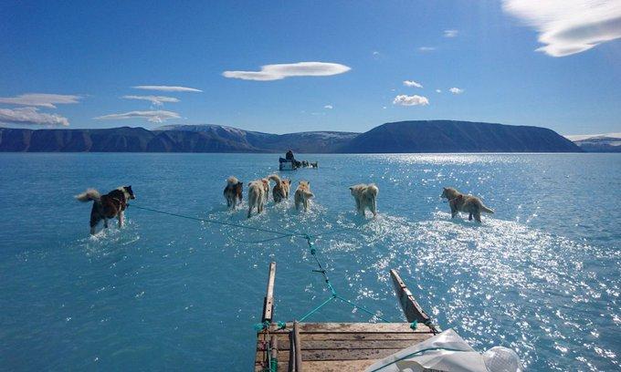 Esta imagen de Groenlandia coloca ante nuestros ojos la emergencia a la que nos enfrentamos dice Pedro Sánchez en las redes sociales