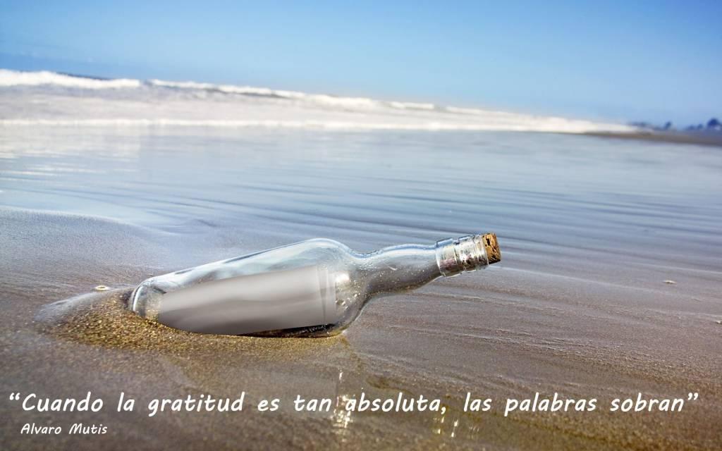 Gracias por leer el mensaje en la botella