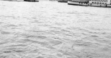 hitckoc-pescanso-suspense-en-la-orilla-del-tc3a1mesis