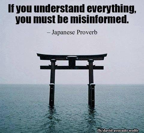 Si lo entiendes todo, debes estar mal informado
