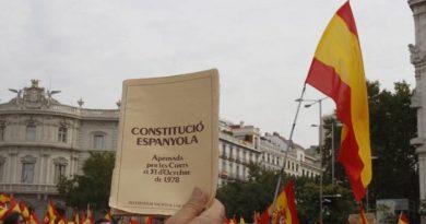 Ideas para una reforma de la constitución