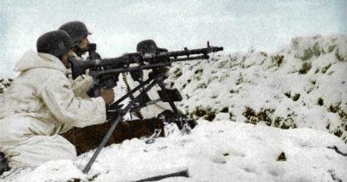 La batalla de Krasny Bor, 74 años de uno de los enfrentamientos más sangrientos