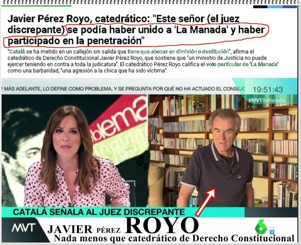 Cada vez menos Pérez y más ROYO el catedrático de Derecho Constitucional