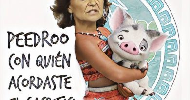 Son tantos los compromisos y pactos que el gobierno está colapsado- Linda Galmor