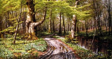 peter-mork-monsted-2