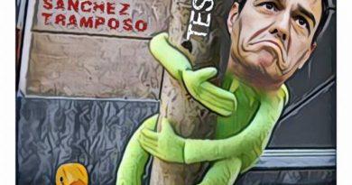 PSOE, fábrica de mediocres. Linda Galmor
