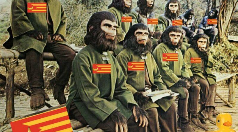 El Planeta de los Simios. Por Linda Galmor