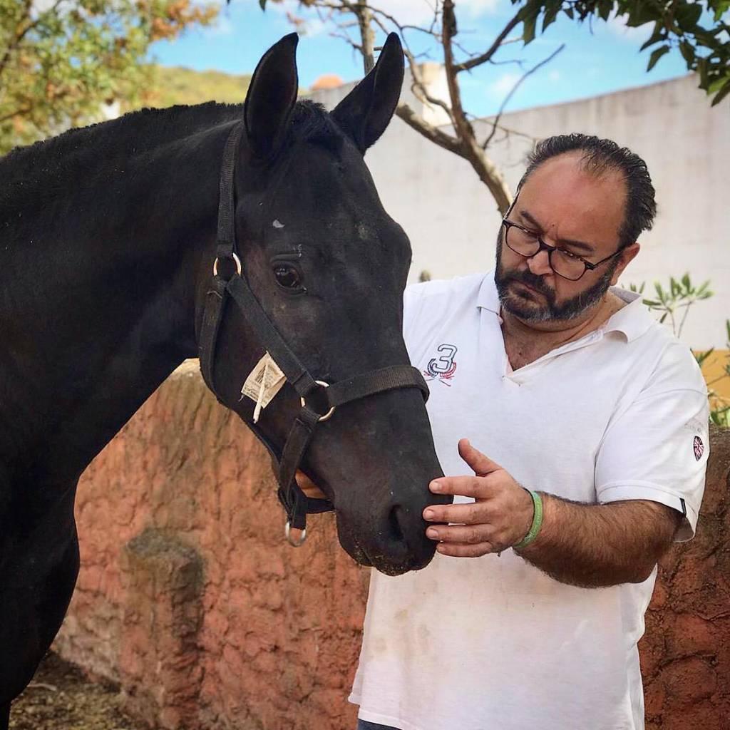 Fernando Molina es el presidente de la Asociación Extremeña de Cría Caballar