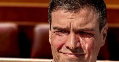 Irse es el mejor favor que Pedro Sánchez podría hacerle al PSOE en este momento