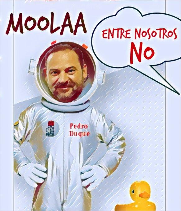 Tras la cagada de Iceta, el Comité Electoral del PSOE está preocupado de que la gente se dé cuenta de cómo son en realidad los dirigentes socialistas. Por Linda Galmor