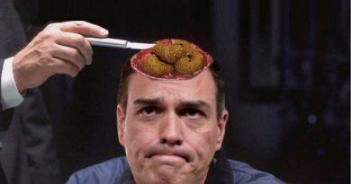 Si algunos os preguntáis que tiene Pedro Sánchez en la cabeza para pactar con Bildu, PNV, ERC, PDECAT y PODEMOS, creo que esta imagen lo deja claro..... Por Tano