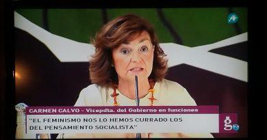 Carmen Calvo, un insulto a la inteligencia. Por José Crespo