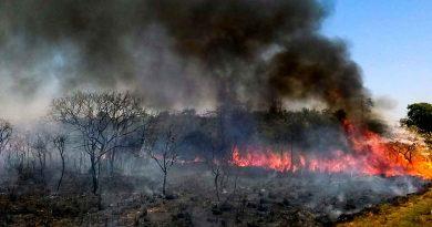Según la NASA, la mayoría de los incendios que suelen darse en ésta época sucedían en África. La picardía política hizo que América del Sur se quede con la mayor parte de los incendios en 2019.
