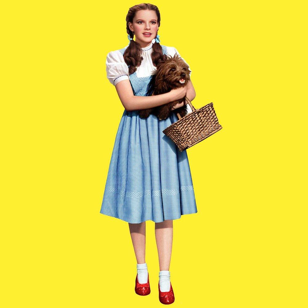 Dorothys Gale y su bolso membrillera
