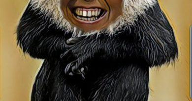 El político sin la seda del poder mono se queda. Por Linda Galmor y Guirong Fu