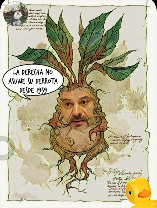 En el vivero de líderes socialistas se utiliza abono orgánico y se nota. Por Linda Galmor