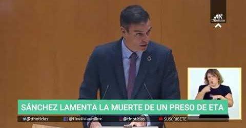 Banda terrorista señor Sánchez