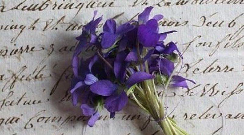 Echo de menos un ramito de violetas para España y su libertad