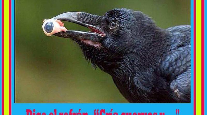 Cría cuervos y … Ilustración de Mariano González Balseiro