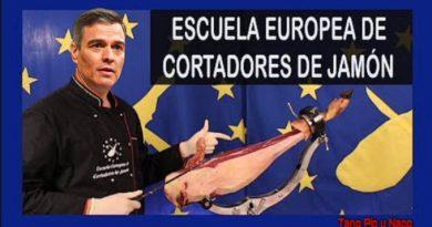 La verdadera titulación Europea de Pedro Sánchez. Tuit de Alberto González