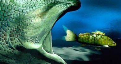 El pez grande se come al chico. Y ahora, el grande se llama globalismo. Por Gusarapo