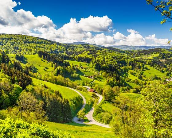 טיול מאורגן לגרמניה - היער השחור וחבל אלזס - KG