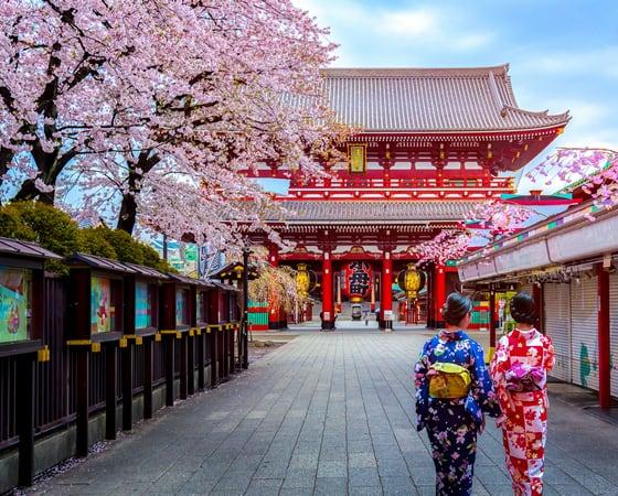 טיול מאורגן ליפן בתקופה פריחת הדובדבן / בתקופת השלכת - JR