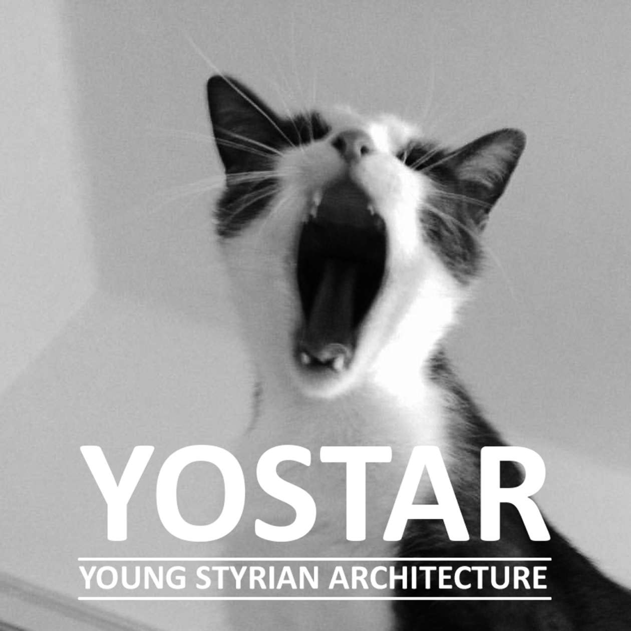 Yostar Young Styrian Architecture 01
