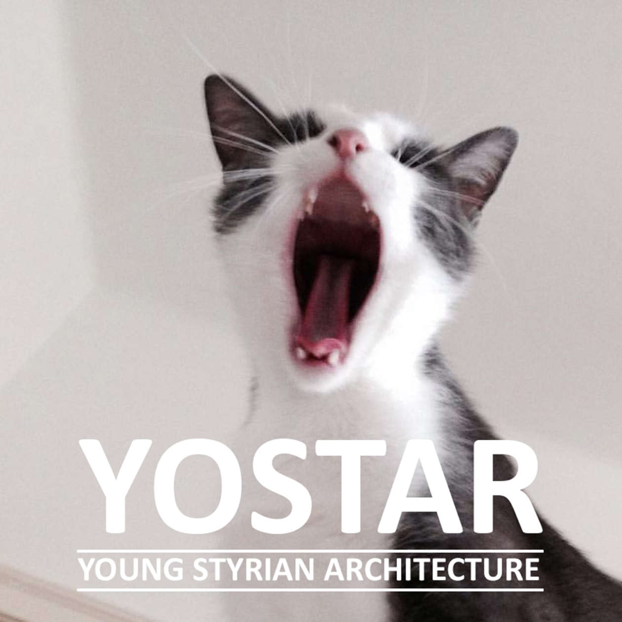 Yostar Young Styrian Architecture Katze