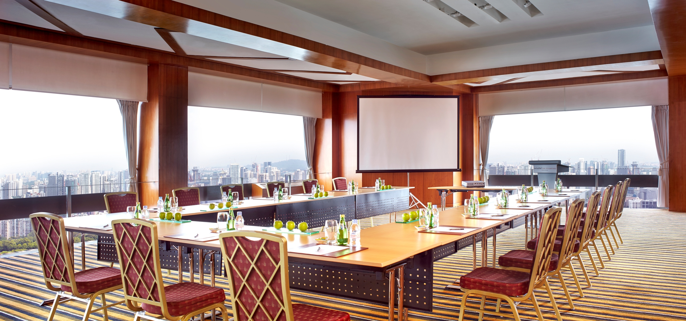 Skysuite Theater