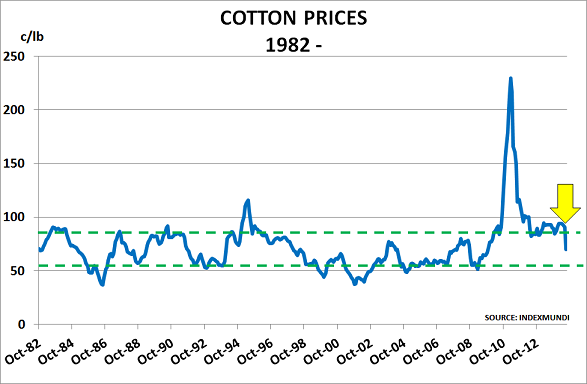 Cotton Jul14a