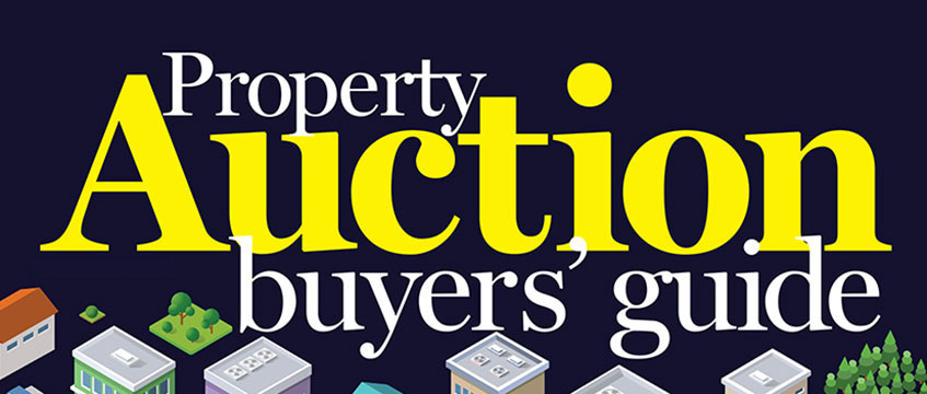 Auction Buyers' Guide