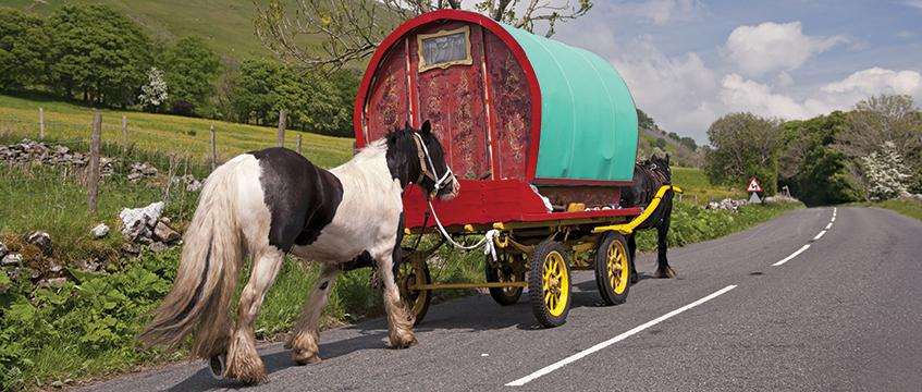 Gypsy caravan © FLPA/Wayne Hutchinson/REX/Shutterstock