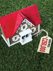 Toy-house-guide-price